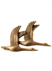 Linnud, 707902